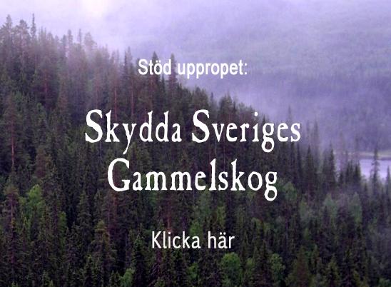 startsida_sv